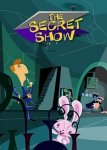 Секретное шоу